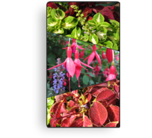 End of Summer - Coleus and Fuchsia Collage Canvas Print