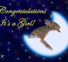 Congratulation's It's A Girl Bunny Rabbit by jkartlife