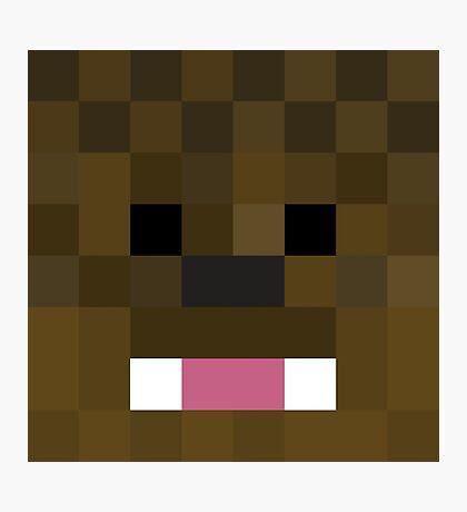 JeromeASF Minecraft skin Photographic Print