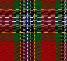 00194 Ancient Caledonia Society Tartan Fabric Print Iphone Case by Detnecs2013