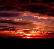 Reids Lookout - Autumn Hues ... by Erin Davis