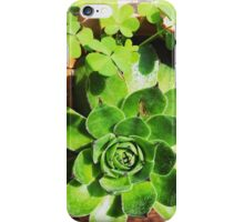 Lucky Plant iPhone Case/Skin
