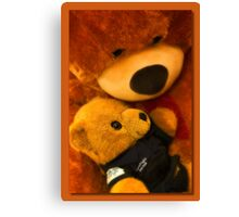 Teddy care 01 Canvas Print
