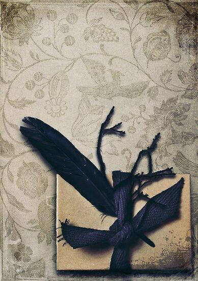 The Gift by Sybille Sterk