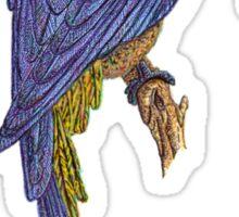 Blue Parrot T_Shirt Sticker