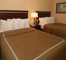 Quality Suites Hotel Universal Studios by addieturner62