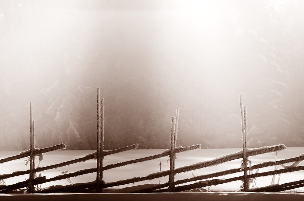25.2.2013: Old Fence, Winter Morning II by Petri Volanen