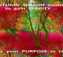 CLARITY OF PURPOSE by Lorraine Wright