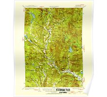 USGS TOPO Map New Hampshire NH Rumney 330327 1928 62500 Poster