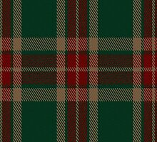 00216 Glen Trool District Tartan Fabric Print Iphone Case by Detnecs2013