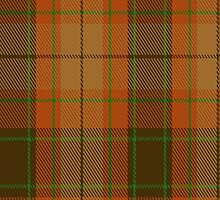 00222 Loch Rannoch District Tartan Fabric Print Iphone Case by Detnecs2013