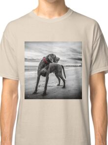 Weimaraner Classic T-Shirt
