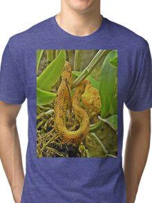Eyelash viper  Tri-blend T-Shirt