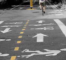 Single Biker on the Road by peterrobinsonjr