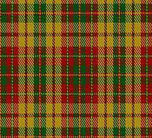 00237 Strathearn District Tartan Fabric Print Iphone Case by Detnecs2013