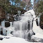 Receding Ice At Ganoga Falls by Gene Walls
