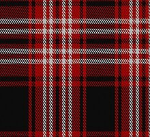 00239 Tweedside District Hunting Tartan Fabric Print Iphone Case by Detnecs2013