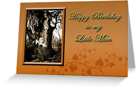 Birthday To My Little Man Willow Tree by jkartlife