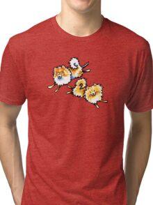 2 Cute Pomeranians Tri-blend T-Shirt