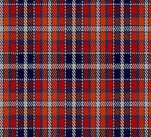 00240 Wombles Tartan Fabric Print Iphone Case by Detnecs2013
