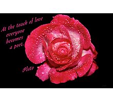 Rose Quote Photographic Print