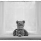 Teddy Bear Waiting by Natalie Kinnear