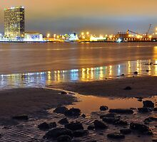 San Diego at Night by Reese Ferrier