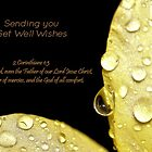 Sending You, Get Well Wishes by aprilann