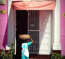 Canasta dama by Beclund