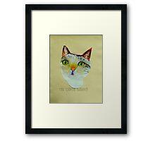 THE SAGE CAT Framed Print