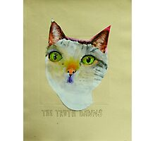 THE SAGE CAT Photographic Print