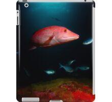 Pig Fish, Poor Knights, NZ iPad Case/Skin