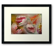Dreaming with tulips Framed Print