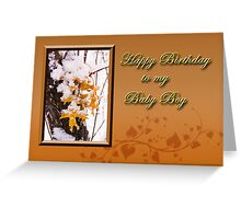 Birthday To My Baby Boy Leaves Greeting Card