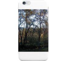 Collins Lake iPhone Case/Skin
