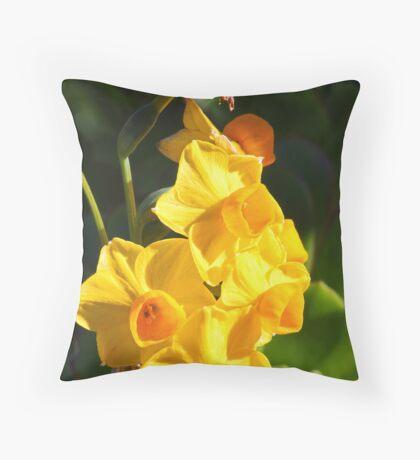 Narcissus jonquilla (Daffodil) Throw Pillow