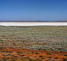 Island Lagoon, outback South Australia by Roger Neal