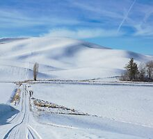Traveling the roads of the Palouse by Jim Stiles