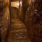 Wine Cellar Walk by phil decocco