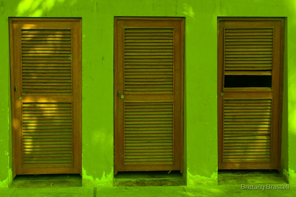 3 doors - green by Brittany Brassell