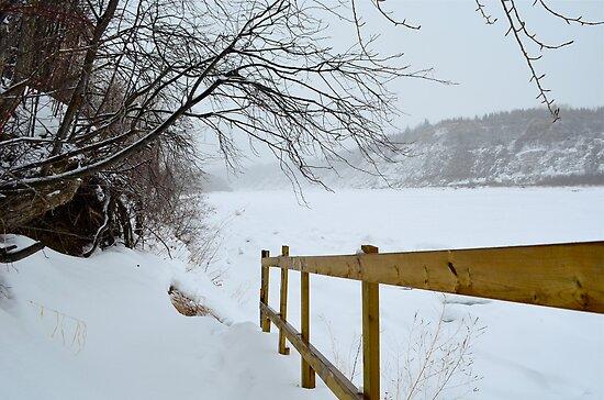Winter - North Saskatchewan River by Roxanne Persson