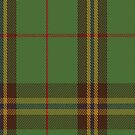 00307 Clare (Prince George) Tartan Fabric Print Iphone Case by Detnecs2013