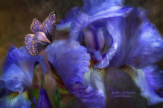 Iris - Goddess Of Mystery by Carol  Cavalaris