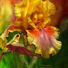 Iris - Fire Goddess by Carol  Cavalaris