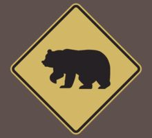 Bear Crossing by Bear Pound