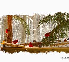 BIRD MENAGERIE  by Randy Branham