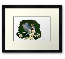BLUEBIRDS PICNICKING IN DAISIES Framed Print