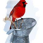 Cardinal on Water can Winter Scene by Randy & Kay Branham