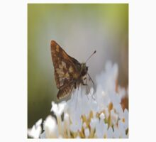 butterfly ? Kids Tee