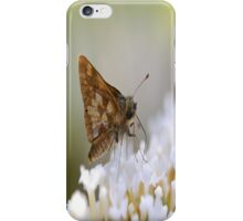 butterfly ? iPhone Case/Skin